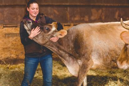 Brookford-Family-Farm-Animals
