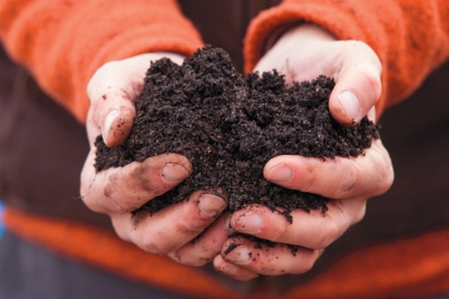 Holding compost