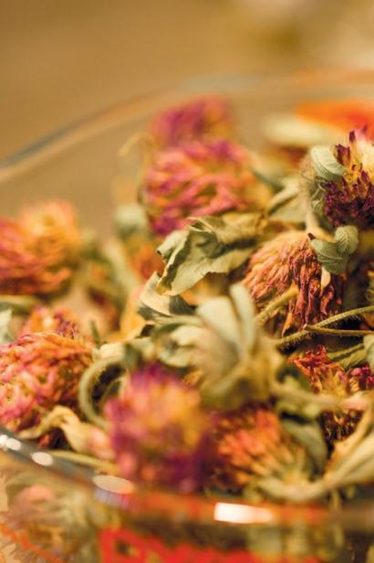 Tamworth-Dried-Flowers
