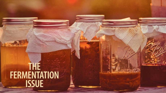 Edible Seacoast, Issue #3, September/October 2015: The Fermentation Issue