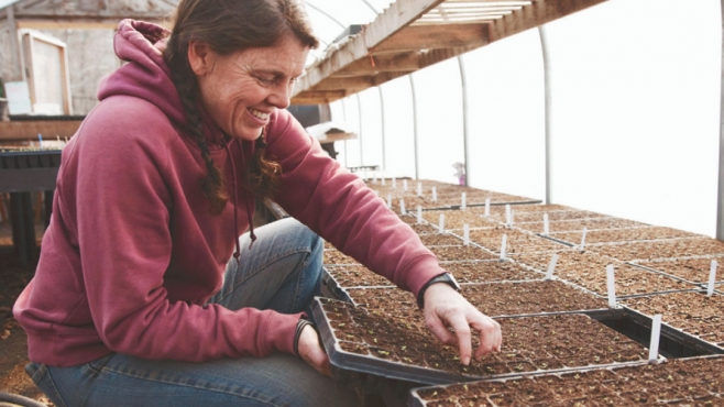 Germating Seeds